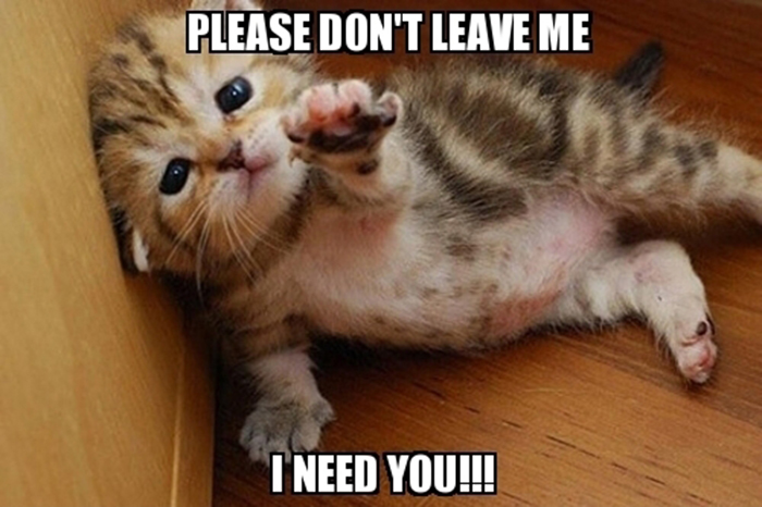 frabz-Please-dont-leave-me-I-need-you-3dad38
