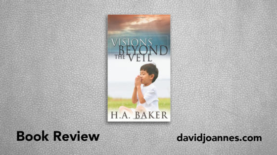 Visions Beyond the Veil book review